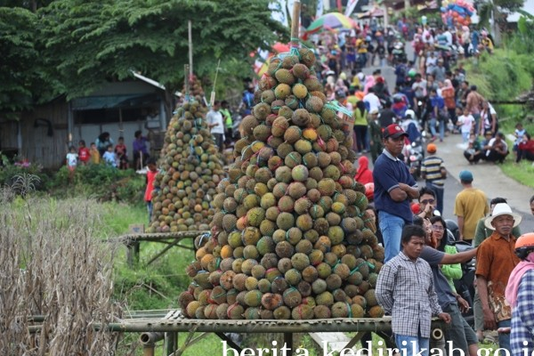 durian_1.jpg