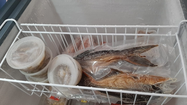 Griya Ulam-Q Gelar Flash Sale Produk Ikan Segar dan Olahan